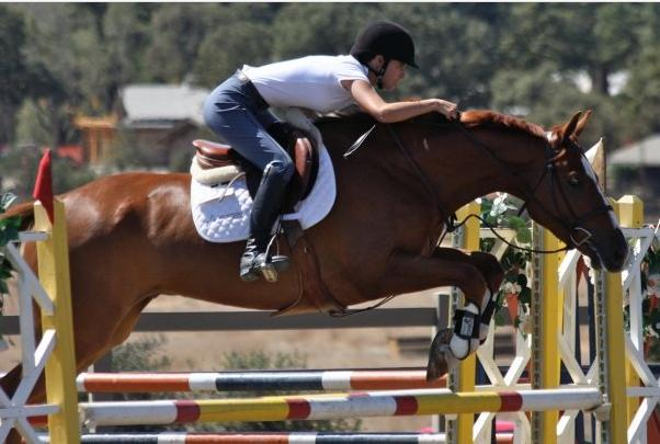 How to Add Value - Learn from a Professional Equestrian
